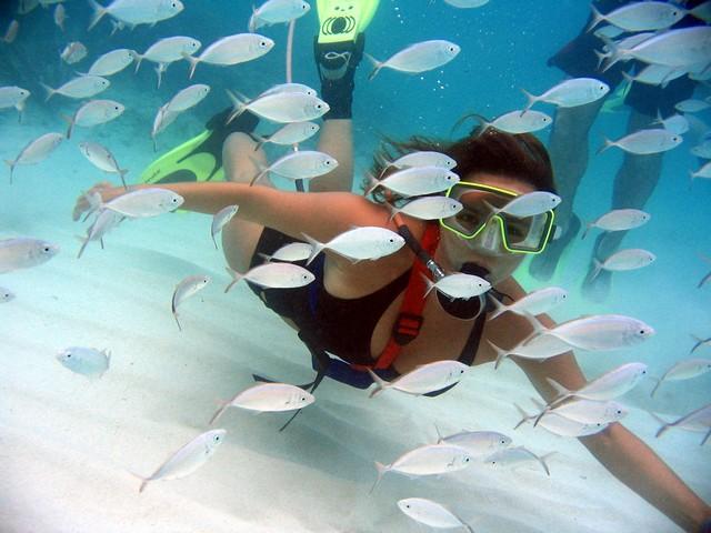 snuba-cayman-grand-cayman-cayman-islands-1